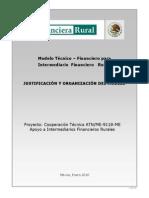1 Modelo Técnico Financiero Justificación y Organización