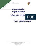 Infoland_VIÑAS SAN PEDRO - PROGRAMA