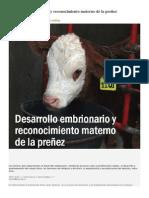 Desarrollo embrionario y reconocimiento materno de la preñez