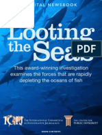 looting the seas