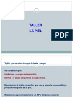 Taller La Piel