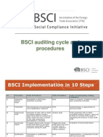 Bsci Auditing Cycle