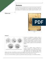 embriogenesis humana.pdf