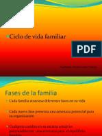 6 Ciclo de Vida Familiar