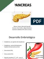 Pancreas Mio 2003