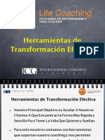 La Rueda de La Vida ICG - Diapositivas