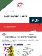 Bases Moleculares