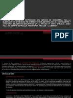TDR Contratacion Del Servicio de Consultoria Para La Elaboracion de Estudios de Pre Inversion