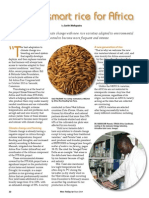Rice Today Vol. 13, No. 2 Climate-Smart rice for Africa