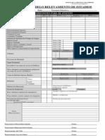Planilla Relevamineto Espectaculos Futbolisticos - 2013.pdf