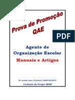 Manuais e artigos AOE Atendimento ao aluno.pdf
