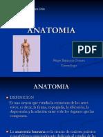Introduccion a La Anatomia Diurno