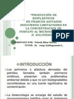 PRODUCCIÓN DE BIOPLÁSTICOS.pptx
