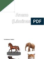 ANEXO_Set de láminas.pdf