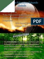 `relaciones en los ecosistemas.pptx
