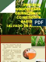 PROCESOS Bioquímicos PARA Obtención DE COSMÉTICOS A PARTIR