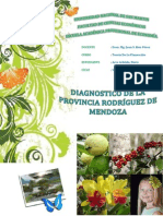 Diagnostico de Rodriguez de Mendoza