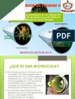 Articulo Cientifico Biopeliculas