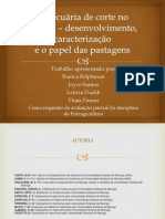 A pecuária de corte no Paraná _ desenvolvimento (1)