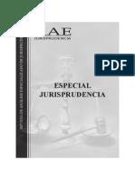 especial-rae38.pdf