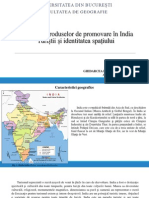 Varietatea produselor de promovare în India