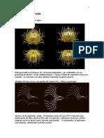 Spiderium Dorada y Cleopstatos