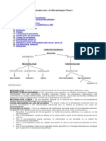 microbiologia-clinica.doc
