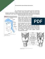 Manajemen Jalan Napas Pada Laryngeal Mask Airway