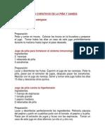 JUGO CURATIVOS DE PIÑA Y SANDIA