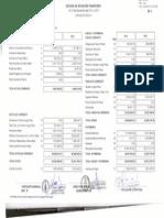 Estado de Situacion Financiera 2013