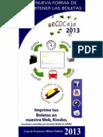 Accede Boletas 2013