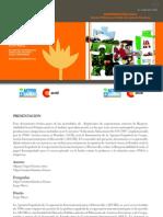 Nuevas tendencias en el ámbito de la Responsabilidad Social Empresarial y estudios de caso en Paraguay