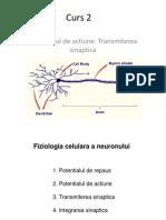Curs_2_pdf