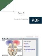 Curs_5_pdf