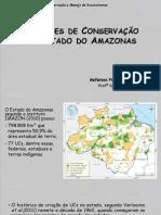Unidades de Conservação no Estado do Amazonas