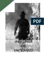 APOSITLA CURSO DE BRIGADA DE EMERGÊNCIA