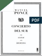 Concierto Del Sur