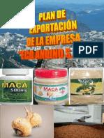 PLAN DE NEGOCIOS DE EXPORTACIÓN