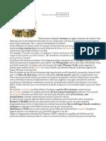 DEFINICIÓN DETURISMO.pdf