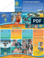 DolphinEncounters Brochure