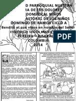HOJITA EVANGELIO DOMINGO DE RAMOS A  BN