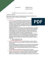 motor_gasolina_diesel.docx