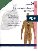 Anatomía y Fisiología de Tortora capítulo 20 corazón