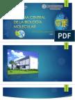 DOGMA CENTRAL DE LA BIOLOGÍA MOLECULAR - UNJFSC
