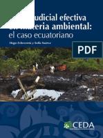 Tutela-judicial-ambiental_2013.pdf