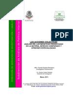 Acciones Colectivas Estudio de Las Reformas Camara de Diputados