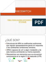 Ribo Switch
