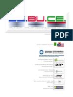 02 2009 DEBUCE CV - Intro-r4 [Compatibility Mode]