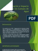 Deforestación asociada a cuerpos de agua