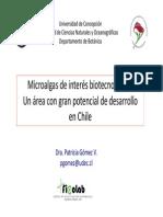 Charla Bio Ingenieria Micro Algas 2014
